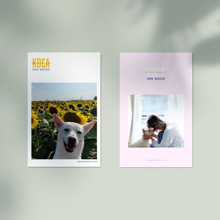 KOCA Brochure